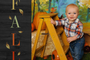 Rancho Cucmaonga Fall Mini Sessions